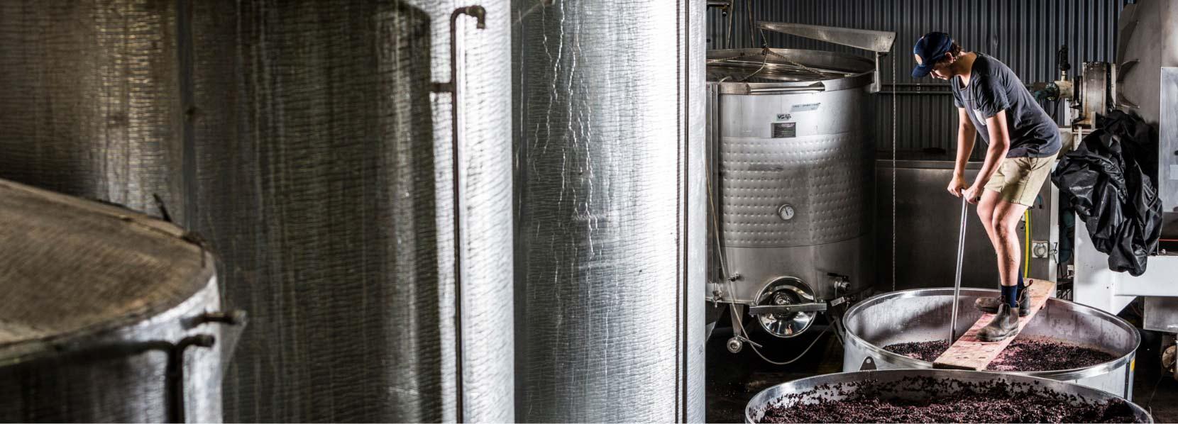 Rob Dolan wines header
